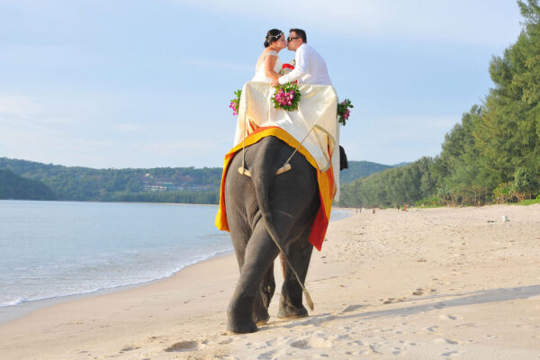 Elephant Wedding @ Beach